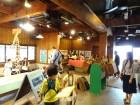 5/15-28 企画展 「野間馬のふるさと・いまばりで遊ぼう!」 、5/13-14 記念イベント開催