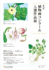 第33回植物画コンクール入賞作品展