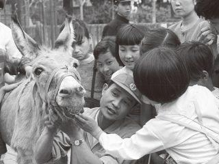 4/10-4/22 子ども動物園 開園70周年記念イベント