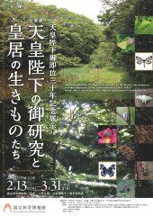 Special Exhibition: