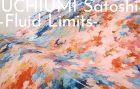 UCHIUMI Satoshi -Fluid Limits-
