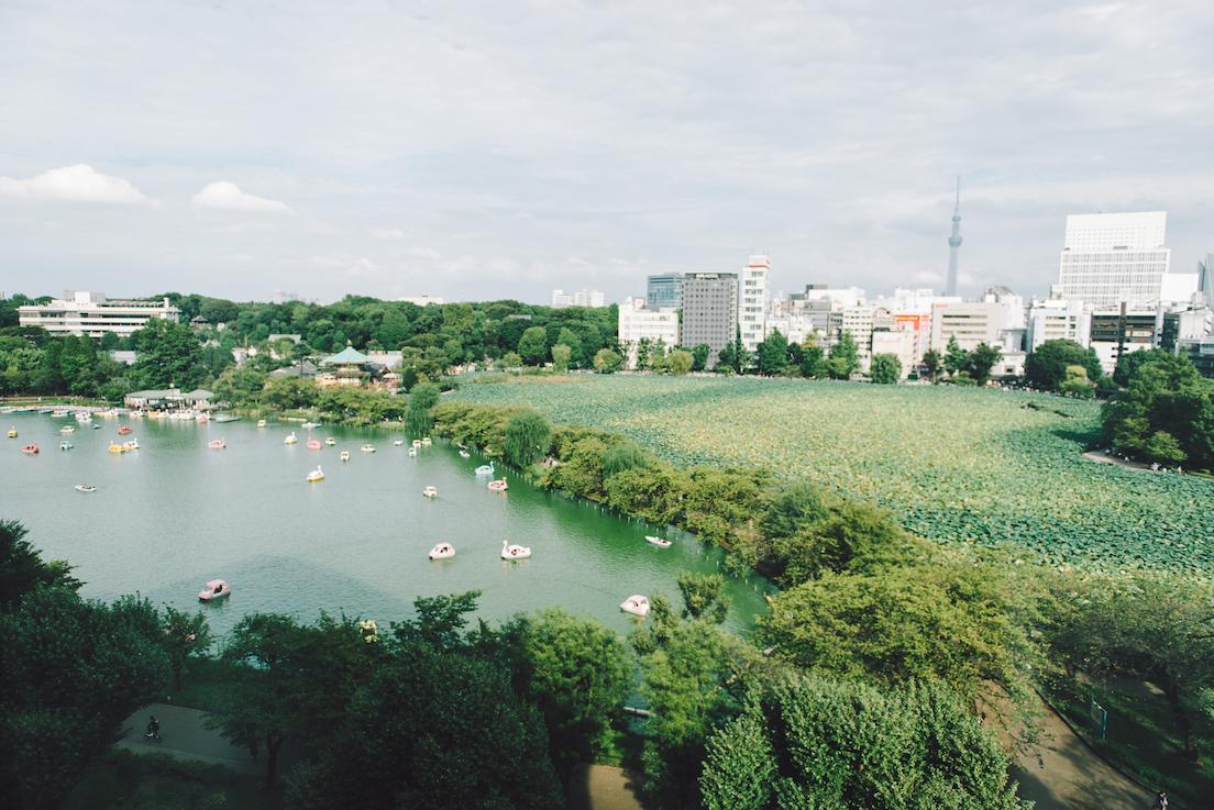 上野公園スタディーズとは